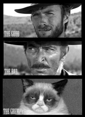the good, the bad, the grumpy
