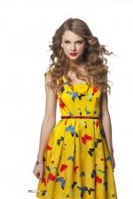 Taylor Mini Dump