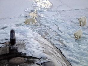 submarine invades Antartica
