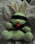 BDSM bunny