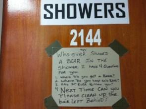 showers – bear shaving
