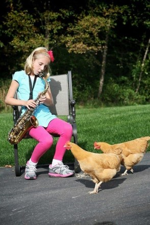 playing for cocks