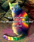 why fit in, when you were born to stand out – dr seuss