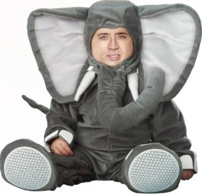 Cage Elephant