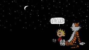Calvin and Hobbes – Stars