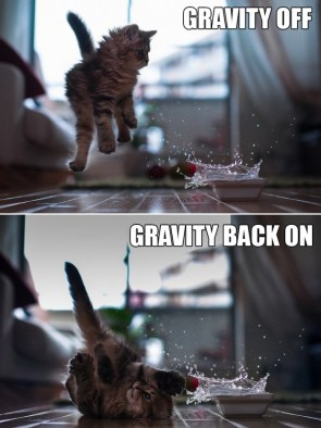 Gravity Off and On