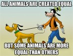 all animals are created equal