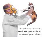 gasmask cat