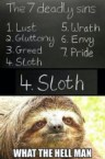 Sloth is a deadly sin