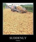 Suddenly – Potatoes