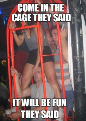 come in the cage they said