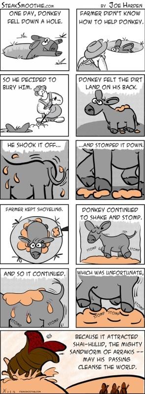donkey worms