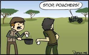 stop, poachers