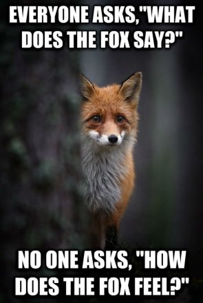 everyone asks what does the fox say