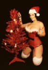 Merry Christmas – Sexy London Andrews Santa Girl
