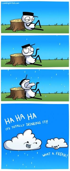 rain drinker