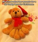 6 foot teddy bear