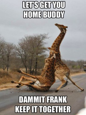 Drunk Giraffe