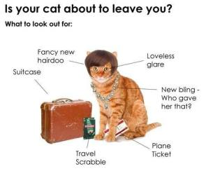 is your cat about to leave you