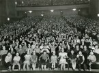 Mickey Mouse Crowd