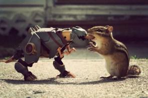 robo squirrel feeder
