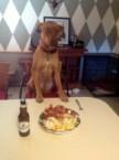 Dinner Dog