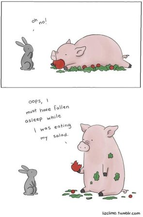 Salad Pig