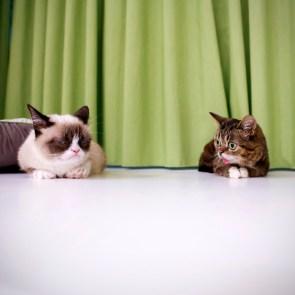 Tard and friend