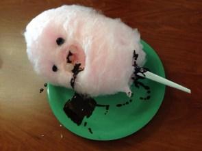 cotton candy death