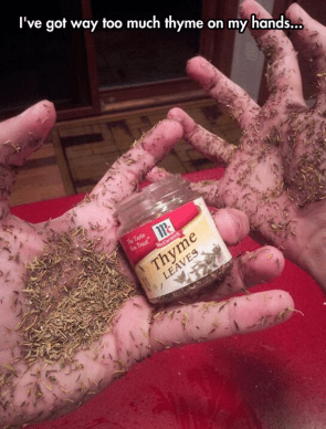 way too much thyme on my hands