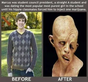 Before and After Weed