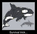 Survival Tricks