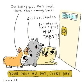 Your dogs day, all day, every day