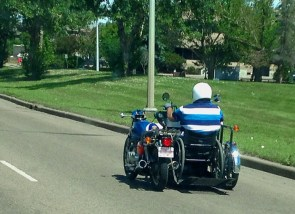 Disabled bike