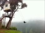 Epid Treehouse