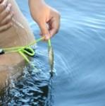 bikini fishing.jpg