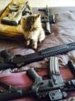 military kitty