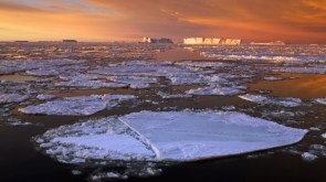 antarctica drifting ice