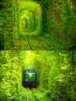 green trains