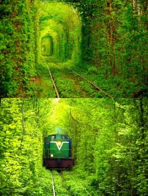 green trains