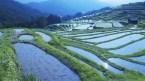 mie prefecture japan
