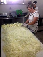 onion cutter.jpg