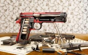 pistol cut away