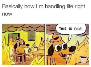 How I'm handling life right now