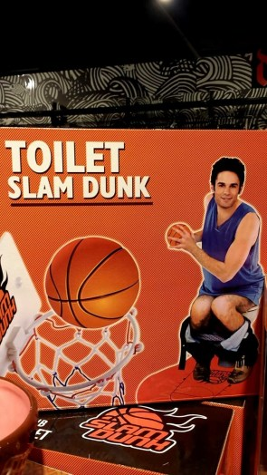 toilet slam dunk