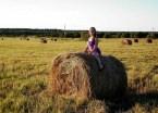 Hay Rider