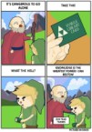 Hyrule Library Card