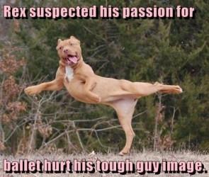 Rex Suspected