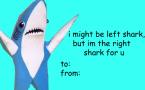 Right Shark