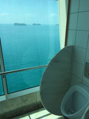 Cruise Pee View